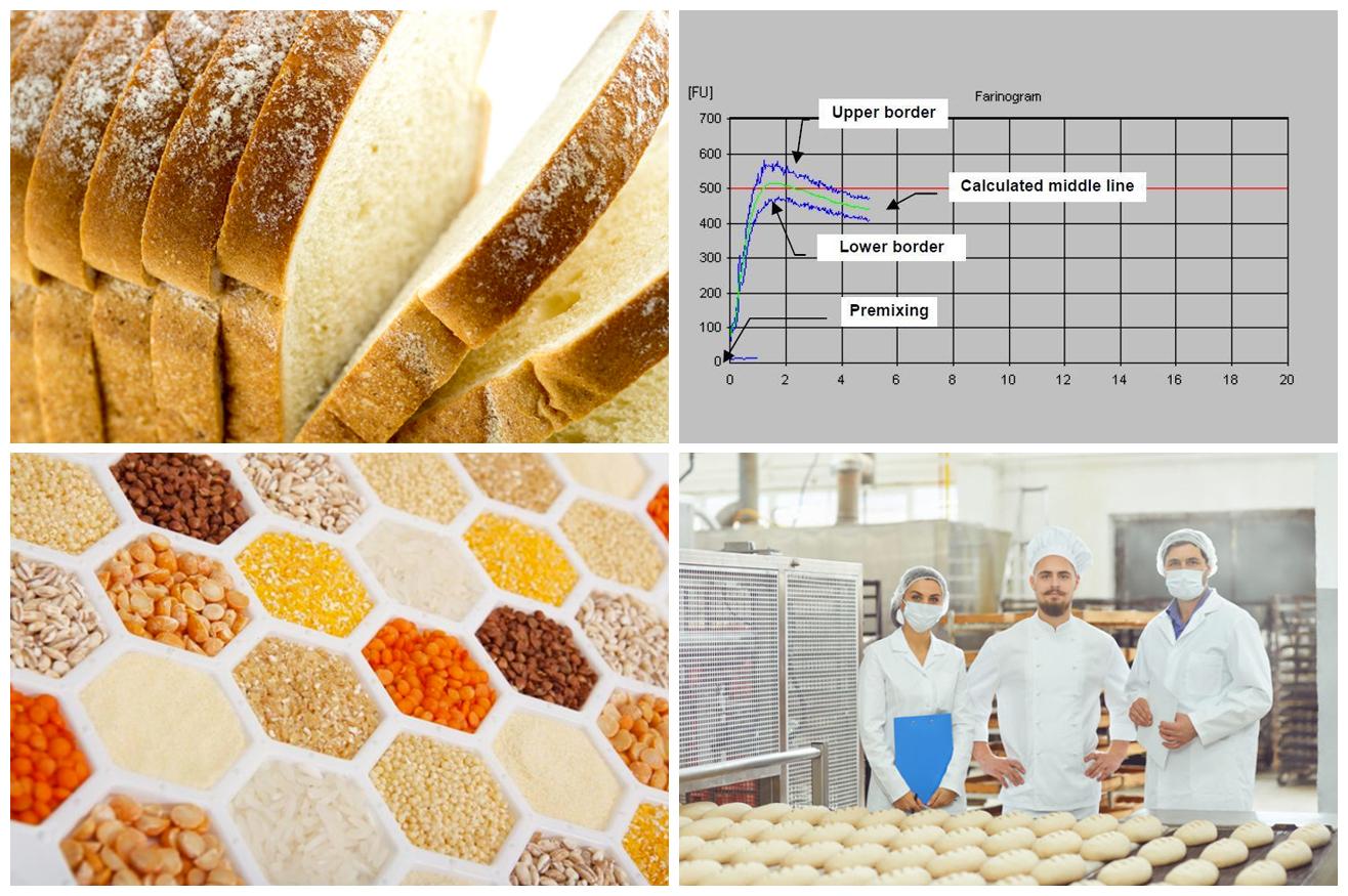 """Corso """"Ingredienti e processi dei prodotti da forno 2021"""""""