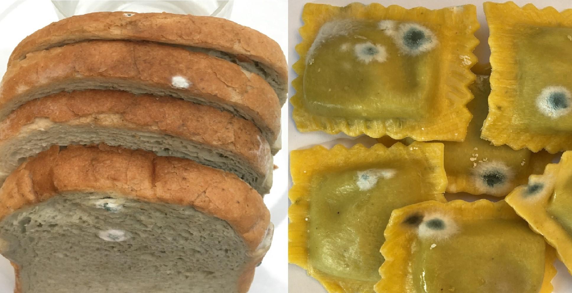 La muffa sulla pasta e pane